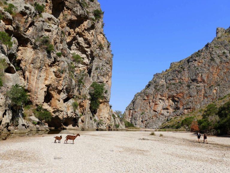 Wunderschönes Mallorca