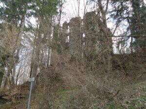 Burgruine Langenegg bei Martinszell