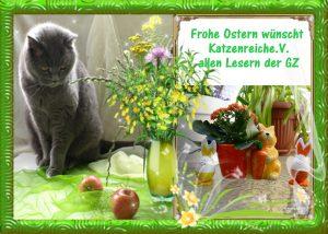 Frohe Ostern wünscht Katzenreich e.V. allen Lesern