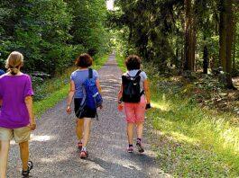 Pilgern entlang des Butterwegs: Die eigene Mitte finden
